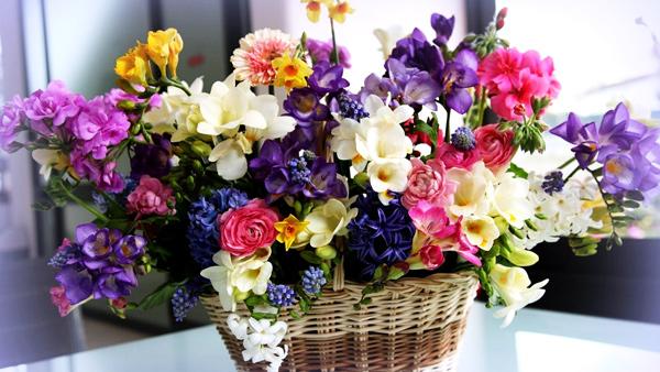 Shop hoa tươi Mỹ Trang - Shop hoa Cần Thơ