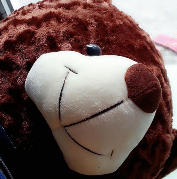 Gấu bông Teddy mặc áo cực đáng yêu