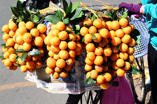 Được bán dọc theo tuyến Quốc lộ 1A từ Vĩnh Long về Cần Thơ.
