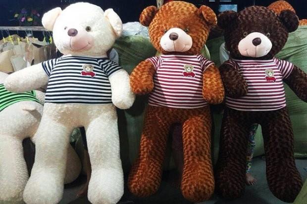 Gấu bông - Gấu Teddy Hậu Giang