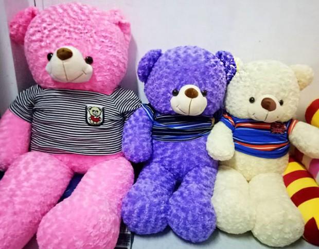 Gấu bông Hậu Giang - Gấu Teddy Hậu Giang