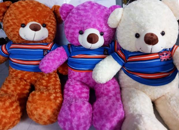 Gấu Teddy Hậu Giang - Gấu Teddy Vị Thanh