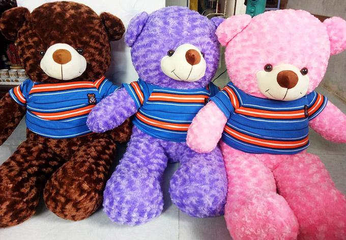 Gấu bông Hậu Giang - Gấu Teddy Vị Thanh