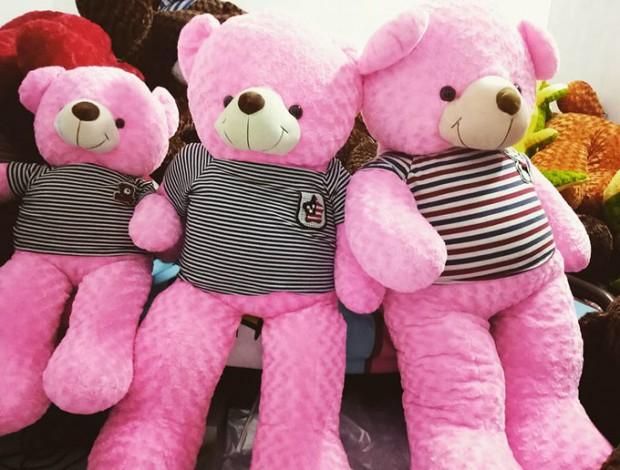 Gấu bông màu hồng - Teddy hồng