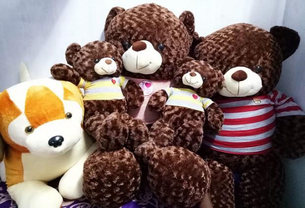 Shop Gấu bông Hậu Giang - Cửa hàng Gấu Teddy Vị Thanh