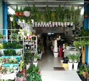 showroom nông nghiệp sinh thái cần thơ