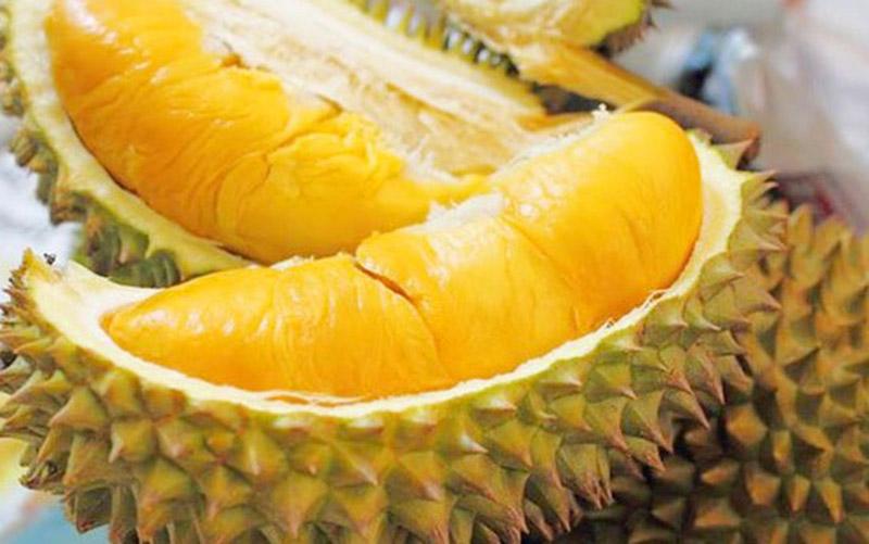 trái-cây-sầu-riêng