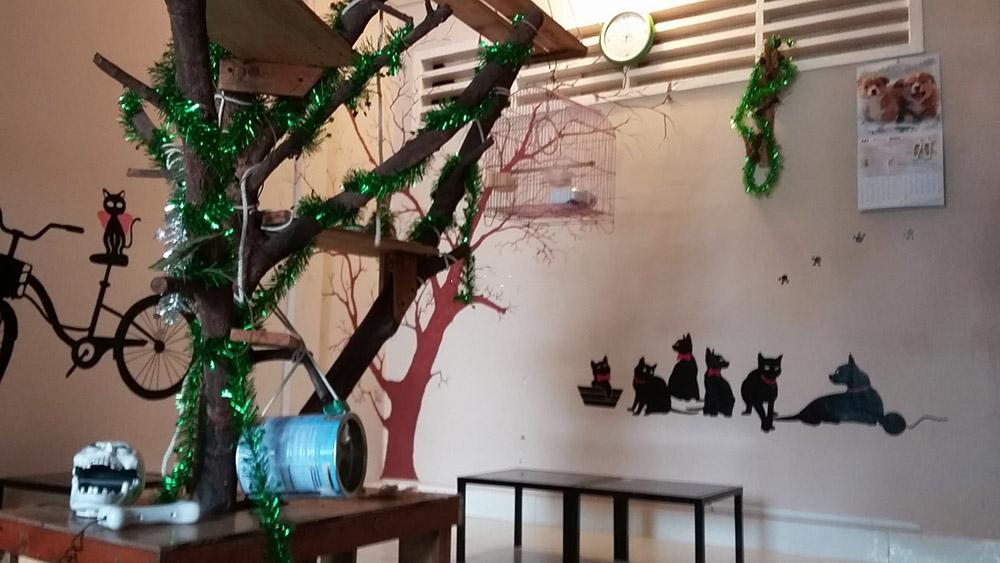 Nội thất đơn giản đáng yêu của 72 Cafe - Cafe độc đáo ở Cần Thơ