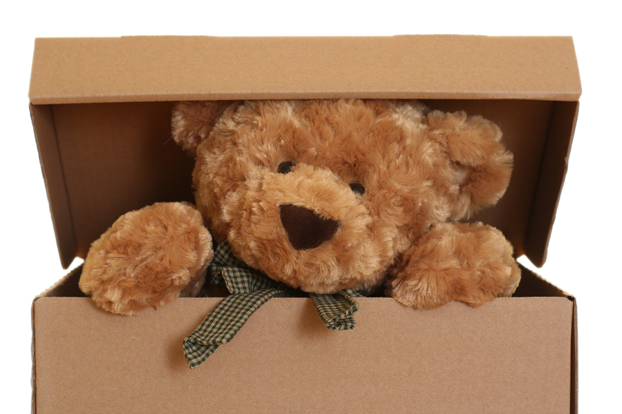 Gấu Bông Cần Thơ: Gấu Teddy Áo Len Mõm Trắng