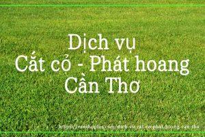 Dịch vụ cắt cỏ phát hoang Cần Thơ
