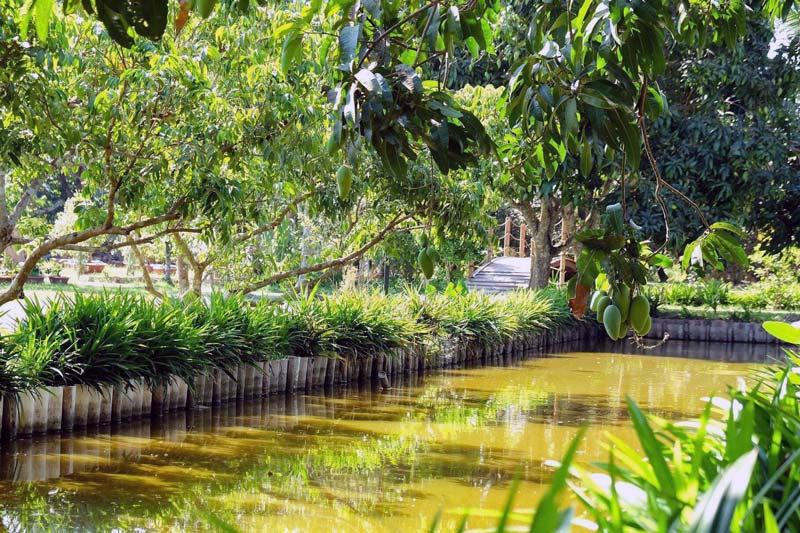 Khuôn viên Hakia Garden - Vườn cây trái
